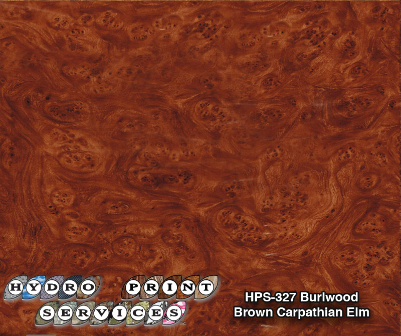 HPS-327 Brown Carpathian Elm Burlwood